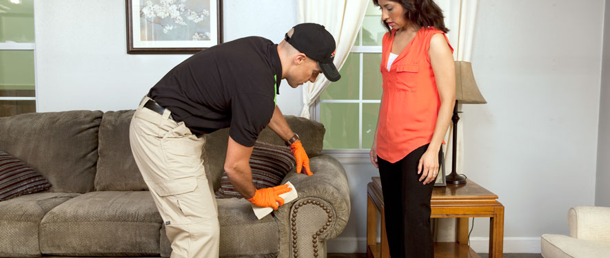 Carrollton, TX carpet upholstery cleaning